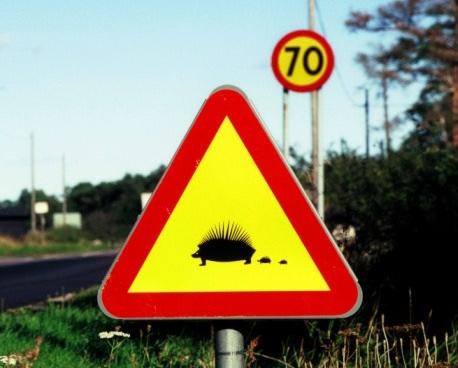 ...не знают или же просто забыли значение схематических дорожных знаков.