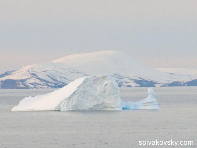 Репортаж №7 из Антарктиды.