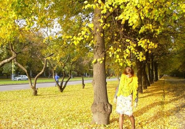 Осенняя фотосессия. Позы и идеи