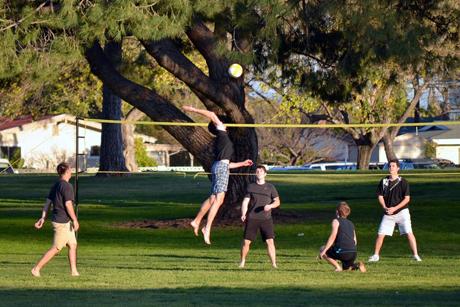 Интересное из жизни волейбола