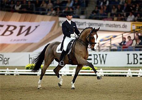 Материал из Википедии.  Выездка - вид конного спорта, высшая школа верховой езды.  На соревнованиях по выездке...