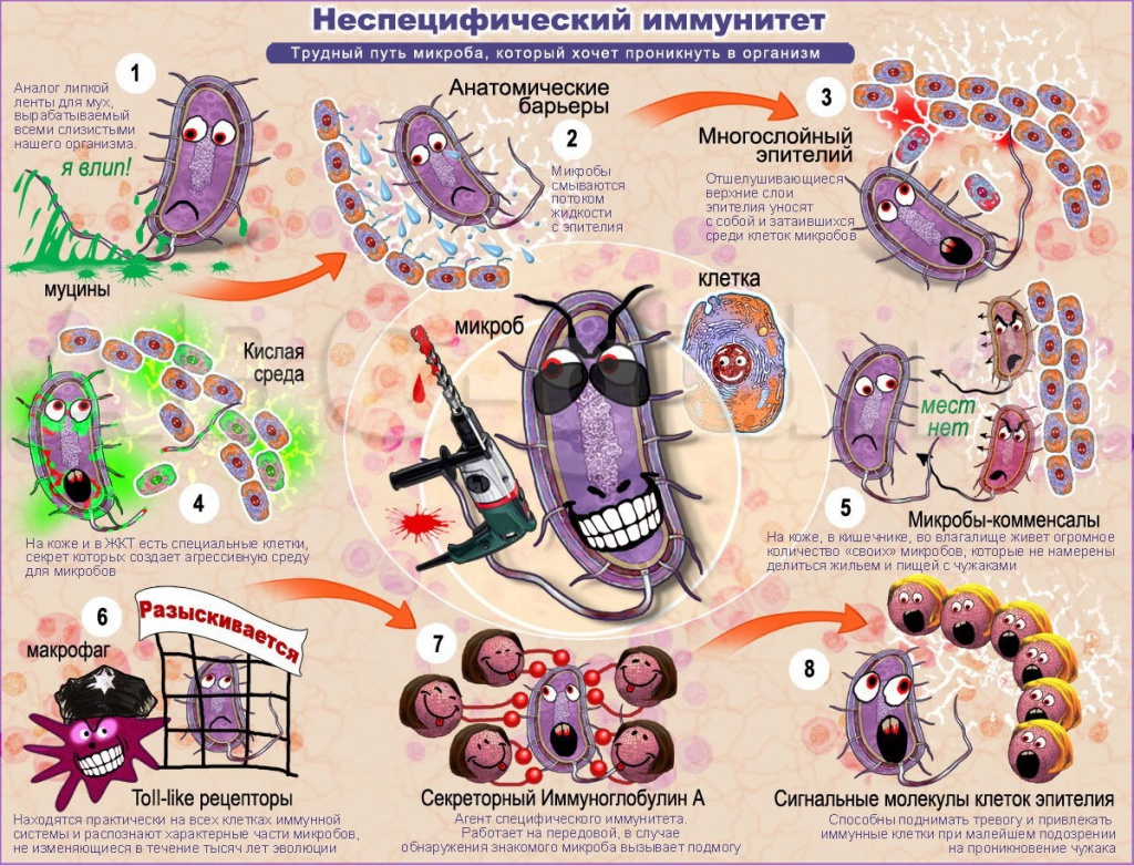 Микробы против Иммунитета