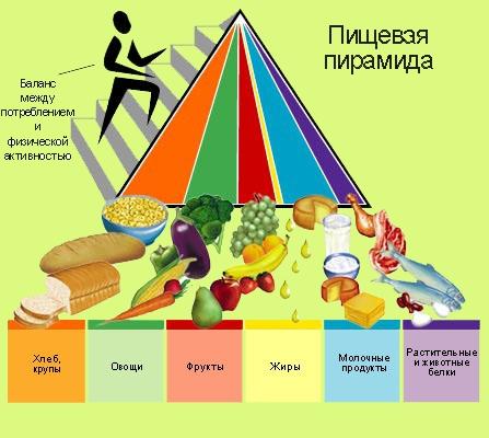 Правильное питание. Как повысить свой иммунитет?