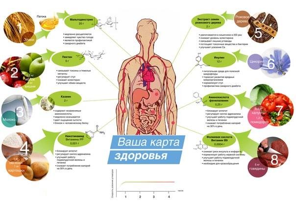 здоровый образ жизни для детей дошкольного