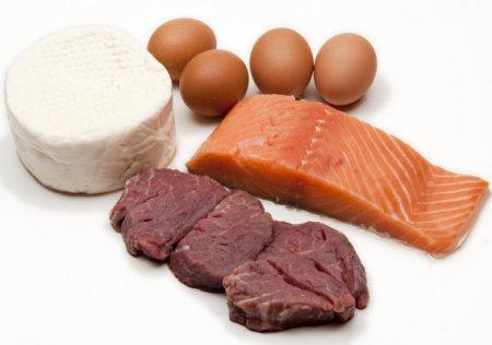 Белковая диета - меню и основные правила