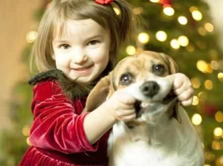 Собаки и дети смешное видео