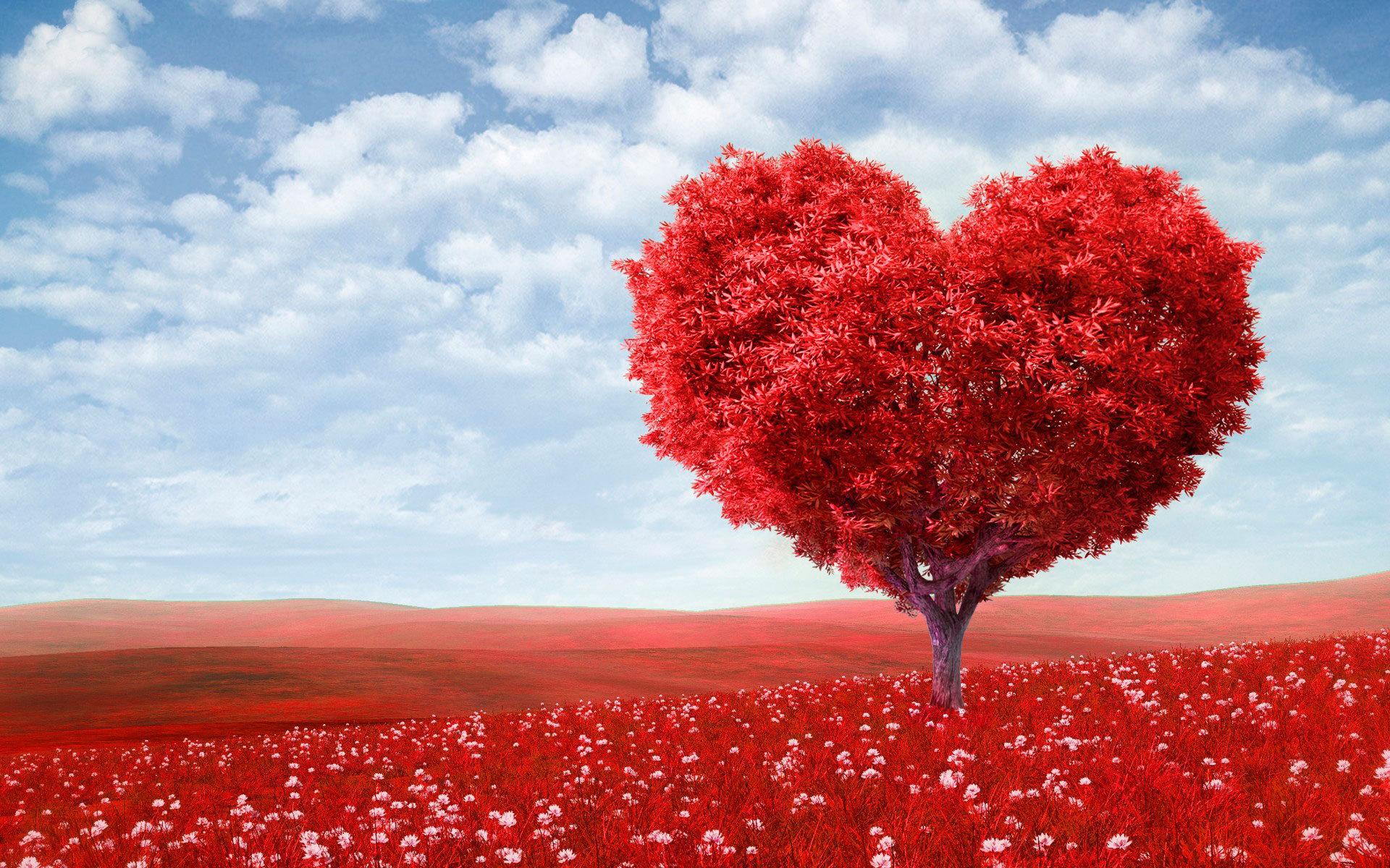 1420485923_holidays___saint_valentines_d