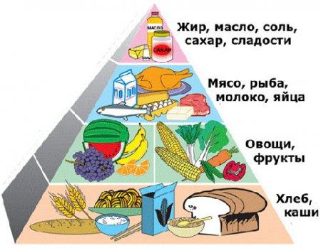 правильное питание врачи