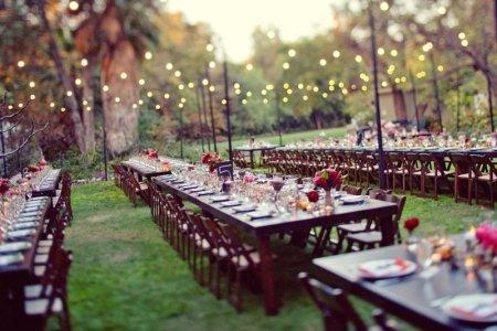 Весілля на природі: плюси і мінуси урочистості на свіжому повітрі