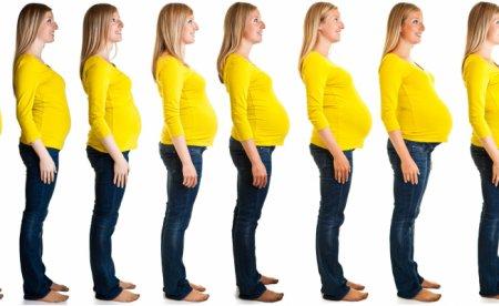 Как узнать срок беременности на 100% точно