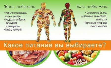 Как правильно питаться - меню для похудения