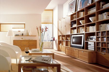 Как создать интерьер жилой комнаты