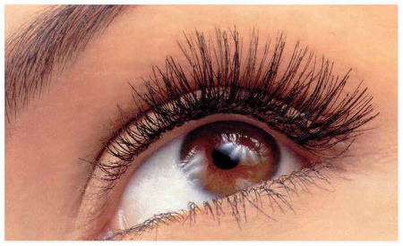 Гимнастика для глаз: как сохранить зрение