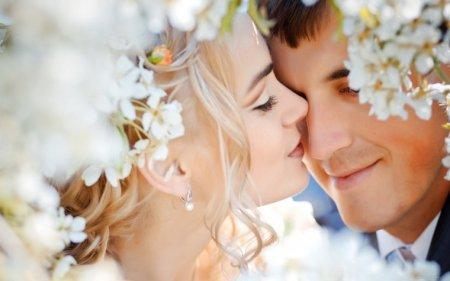 11 цікавих ідей для конкурсу на викуп нареченої