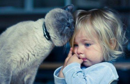 Как побороть капризы годовалого ребенка