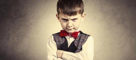 Упрямый ребенок. Как воспитывать и надо ли?