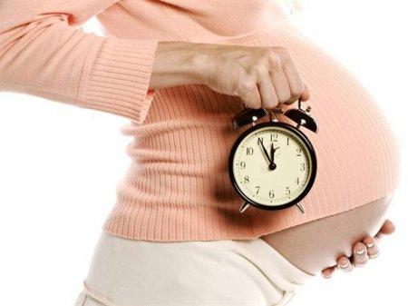 Рассчитать срок эко беременности