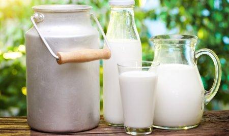 Полезное молоко — советы профессионалов