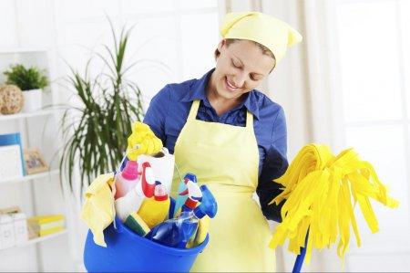Выбираем домработницу в помощь хозяйке